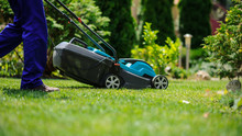 The Grass Mower In Actione