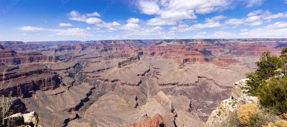 Grand canyon panorama landscape