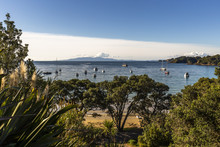 Waiheke Island, Auckland, New ...