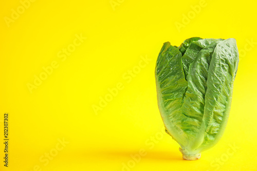 Obraz na plátně  Fresh ripe cos lettuce on color background