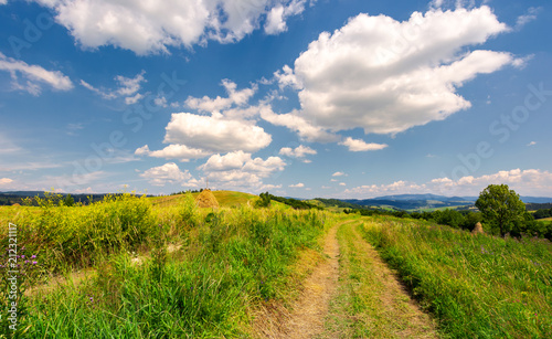 Staande foto Bleke violet beautiful rural landscape in mountains. lovely summer scenery. road through agricultural field under the blue sky with fluffy clouds