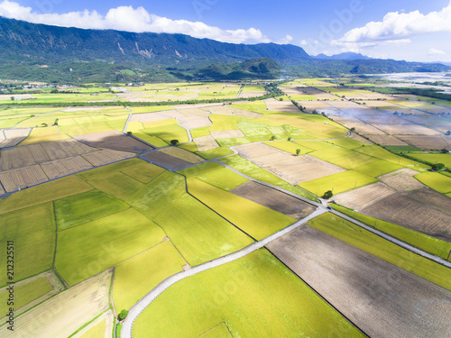 Foto op Canvas Luchtfoto aerial view of rice field .Taiwan.