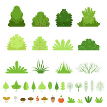 Set Of Different Forest Bushes...