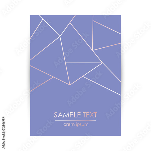 Fototapeta Elegant Design Template With Abstract Rose Gold Geometric Pattern And Space For Text Invitation Card Vector Cover