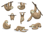 Fototapeta Fototapety na ścianę do pokoju dziecięcego - Sloth Poses Cartoon Vector Illustration