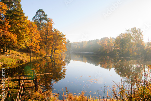 Obraz Sunny morning in the autumn forest by the lake - fototapety do salonu