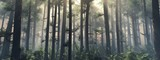 Fototapeta Forest - Trees in the fog. The smoke in the forest in the morning. A misty morning among the trees. 3D rendering