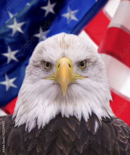 Bald eagle and Statue of liberty with american flag out of focus
