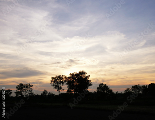 Poster Beige Beautiful Sunset, sunlight and tree field landscape in the evening.