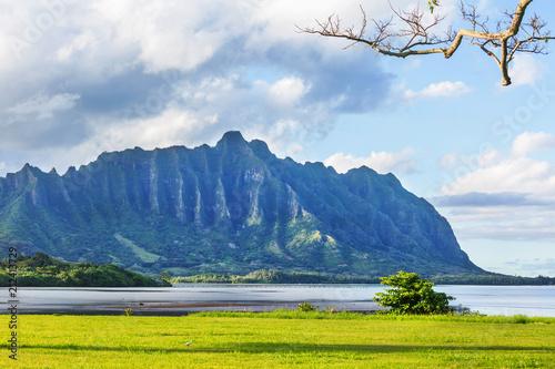 Foto op Aluminium Oceanië Oahu