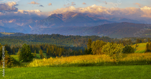 Poster Melon mountain meadow at the foot of the mountains- spring panorama of the Tatra Mountains, Poland
