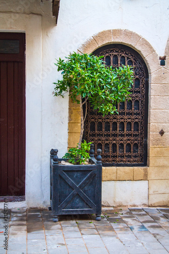 Tuinposter Afrika Orange tree in a large wooden box on the background of a large window with wrought-iron gratings on the narrow street of Essaouira. Africa, Morocco