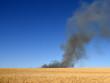 Dunkle Rauchschwaden eines brennenden Weizenfeldes vor strahlend blauem Sommerhimmel