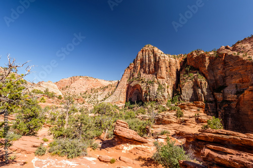 Foto op Canvas Verenigde Staten Landscape in Zion National Park