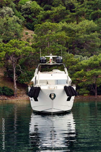 Modern white yacht in front. The forest on the shore in the background