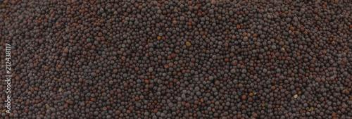 Fotografia Fresh and Healthy Mustard Seed