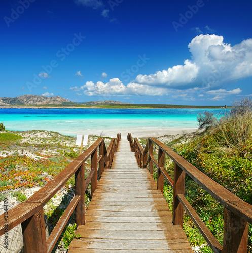 Fotografie, Obraz  Sardinien im Sommer