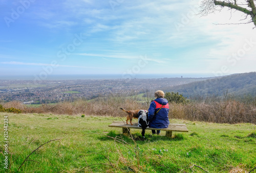 Valokuva  Rear view of lady and her dogs sitting on a bench overlooking  Eastbourne