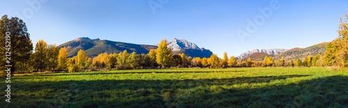 Fotografia  Vista panoramica de Paisaje  otoñal de prados verdes arboledas y montañas rocosas  al fondo