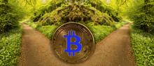 Concept Of Bitcoin Or Blockchain Fork