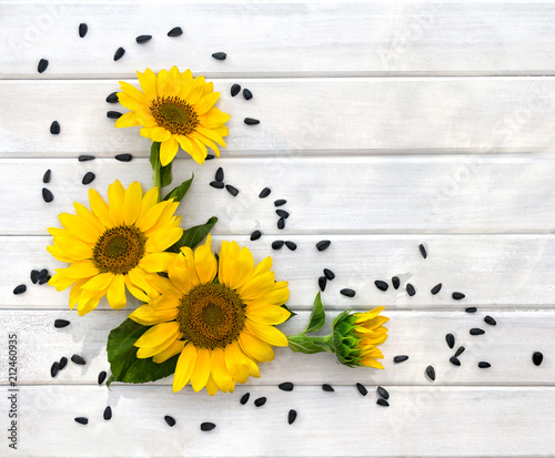 Keuken foto achterwand Bloemen Yellow flowers of sunflower and seed on background of white painted wooden planks with space for text. Top view, flat lay