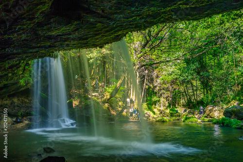 Poster Watervallen 新緑の鍋ヶ滝(裏見の滝)