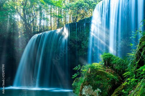 Foto op Aluminium Watervallen 新緑の鍋ヶ滝(熊本県阿蘇郡)