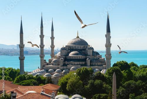 In de dag Historisch geb. Mosque in Istanbul