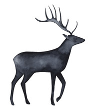 Hand Drawn Watercolour Deer Silhouette. Symbol Of Gentleness, Good Fortune, Unconditional Love, Big Heart, Nobility. Handmade Stylized Water Color Painting On White. Template For Quotes And Lettering.