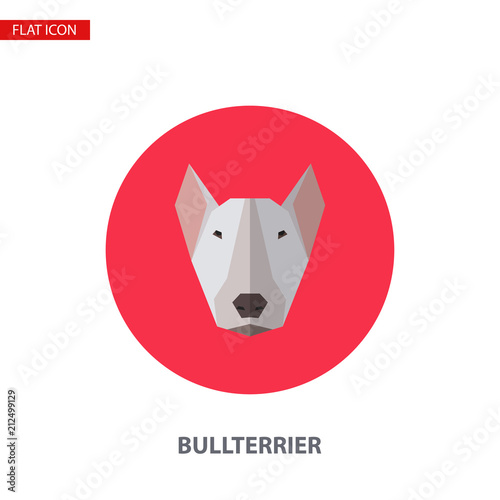 Fotografia Bullterrier head vector flat icon on turquoise circular background