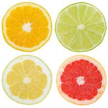 Zitrusfrüchte Südfrüchte Sammlung Orange Zitrone Früchte Quadrat Geschnitten Hälfte Freisteller Freigestellt Isoliert