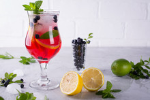 Fresh Blueberry Summer Mojito ...