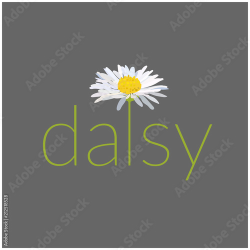 daisy text vector illustration. card. greeting. name logo. Fototapeta