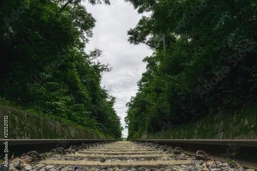 hangdong abandoned railroad Poster