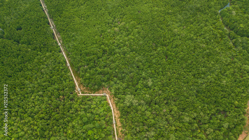 Deurstickers Groene aerial view landscape of Tree or forest , Krabi Thailand.