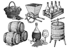 Collection Sketch Picture Wine Set. Vector Illustration