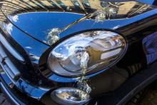 Bird Droppings On Car, Shit Bird Covered On Headlight And Hood Vehicle.