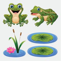 Zestaw żaba kreskówka i lilii wodnej