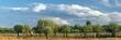 letni krajobraz nad rzeką z wierzbami i pięknymi obłokami