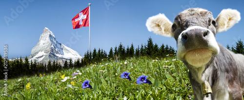 Fotografie, Obraz  Matterhorn mit Kuh und Schweizer Flagge