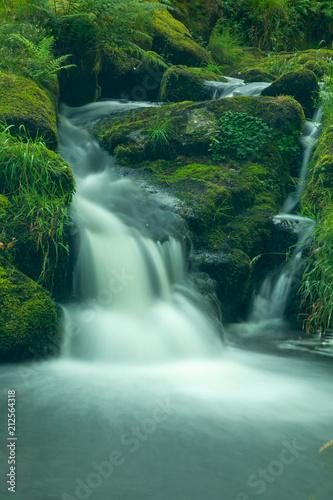 Foto op Canvas Venford Brook, Dartmoor, Devon, England