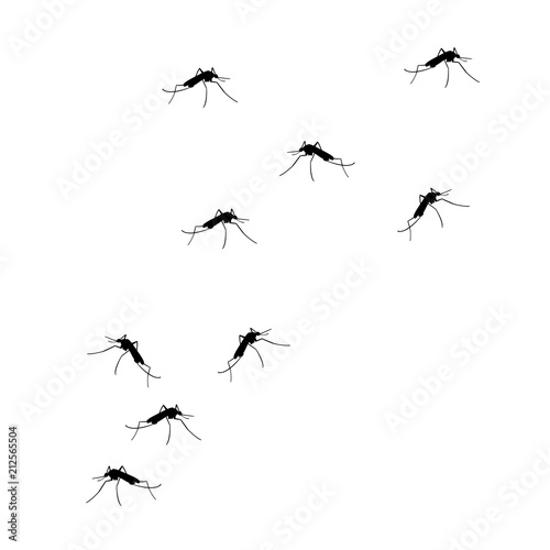 Photo FLying mosquitoes vector