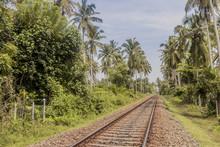 Bahngleisen In Sri Lanka