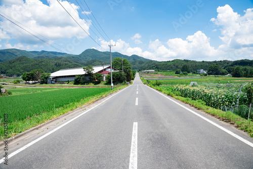 Obraz 田舎の道路 - fototapety do salonu