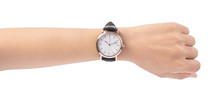 Hand Holding Wrist Watch Isola...
