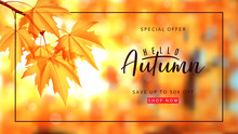 Autumn Sale Banner Template. V...
