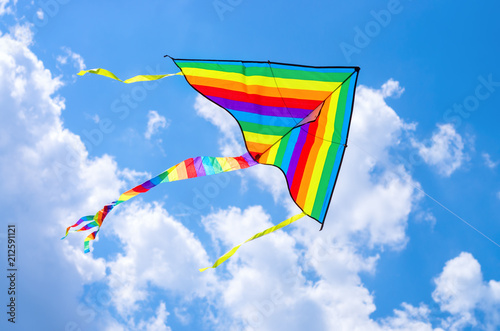 Fotografie, Obraz colorful flying kite flying in the sky with clouds