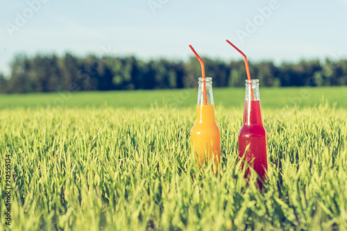 Photo  Alcoholic fresh beverage Coctails party red and orange in bottles standing in su