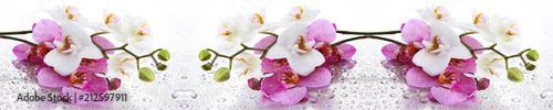 Stickers pour porte Orchidée Beyaz ve Pembe Orkide Panoramik