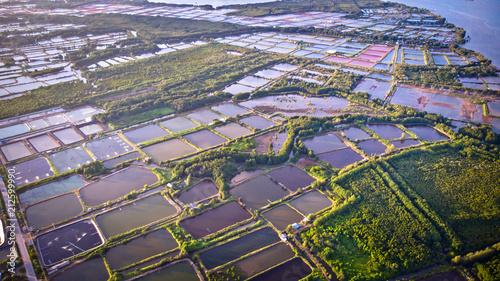Aerial view of shrimp farm and air purifier in Thailand Canvas Print